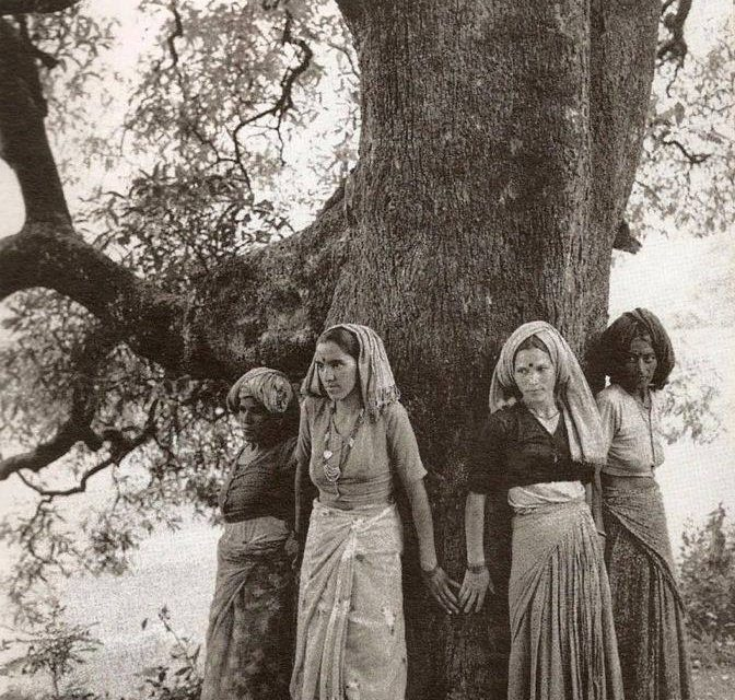 A Ligetvédők ősei, az első tree hugger környezetvédők