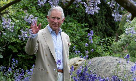 70 éves Károly walesi herceg – a biokertészkedés legjobb marketingese