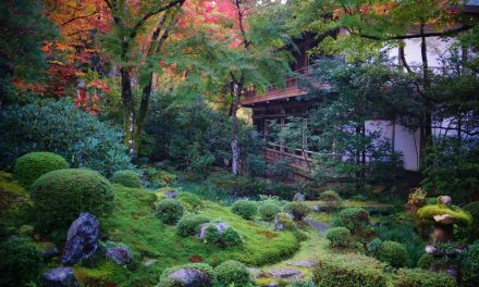 Egy fantasztikus templomkert Japánból