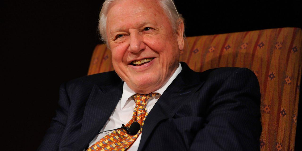 David Attenborough fogja képviselni az emberek véleményét az ENSZ éghajlatváltozási tanácskozásán