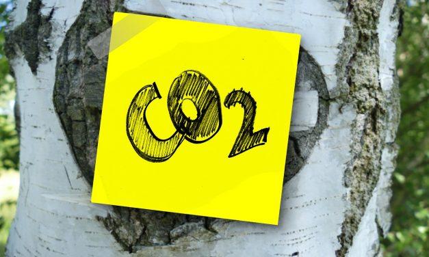 Szén-dioxidot átalakító elektrokémiai reaktorokat fejlesztenek magyarok