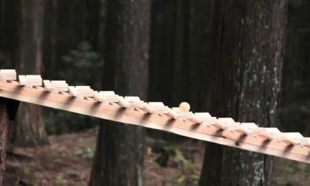 Természet és zene egyensúlya egy japán reklámban