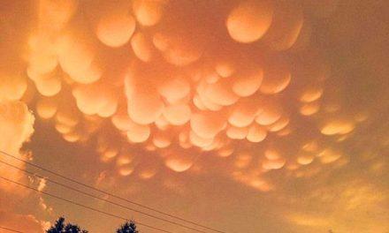 Ilyen furcsa narancssárga gombafelhőket még sosem láttunk