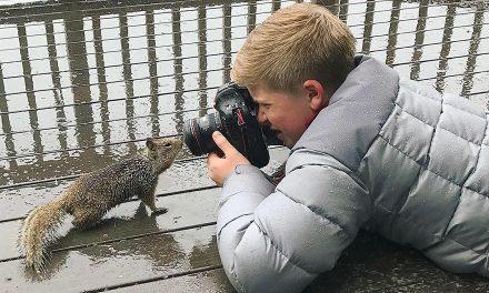 Steve Irwin 14 éves fia csodálatos fotói