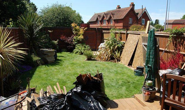 Nem látod, mekkora kupi van a kertben?
