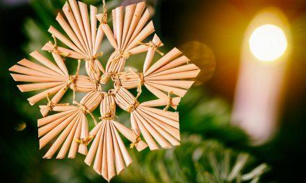 Környezettudatos karácsonyfa-installációk a Városháza parkban
