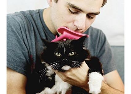 Nem láttad jönni: itt a szájba vehető macskanyalogató