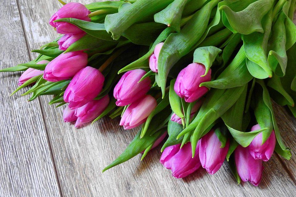 Itt szerezheted be a tavasz legszebb virágait. De siess, mert csak egy napig tart!