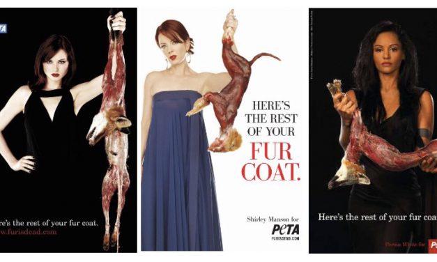 A döglött állat már nem divat