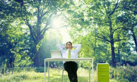 Vidd ki az irodát a szabadba, hogy jobban menjen a munka