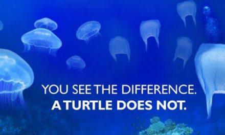 Ha kinyírjuk az óceánokat, mind megfulladunk
