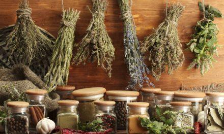 5 tuti módszer, amivel sosem fogysz ki a fűszernövényekből